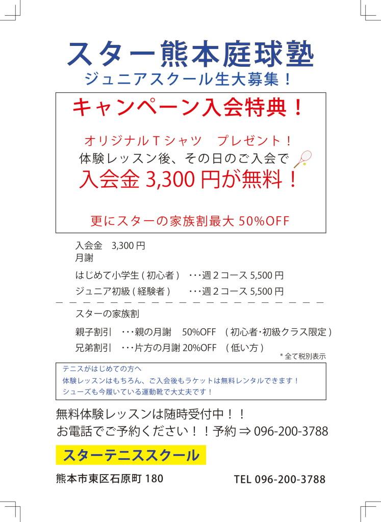 チラシ0603-1